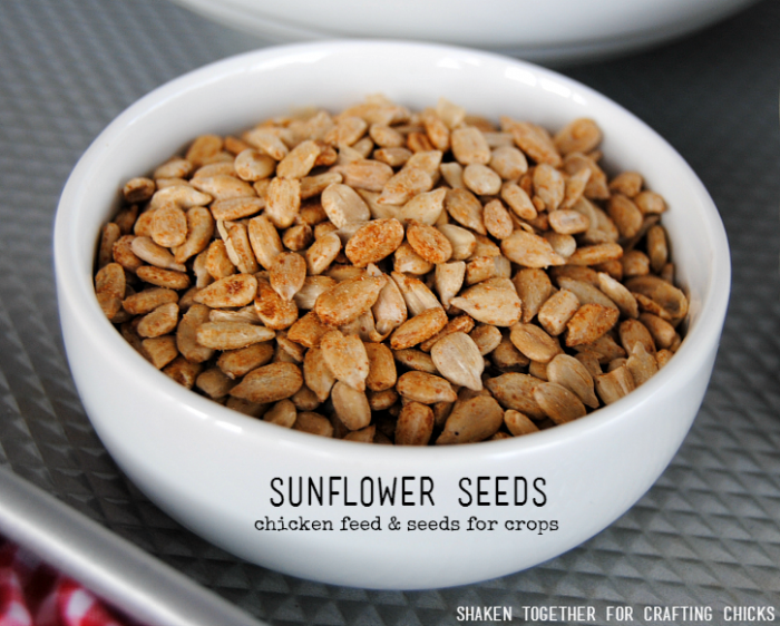 On the Farm Snack Mix - feed the chickens and grow crops with the sunflower seeds!