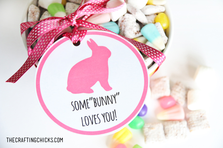 "Some""bunny"" Loves You Treat Tag Free Printable"