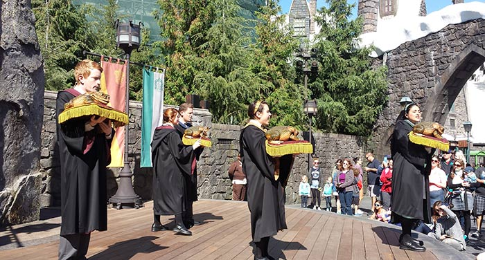 Harry Potter Frog Choir