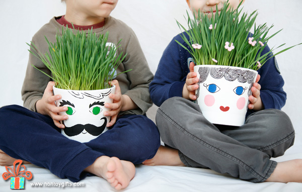 Grass head flower pot