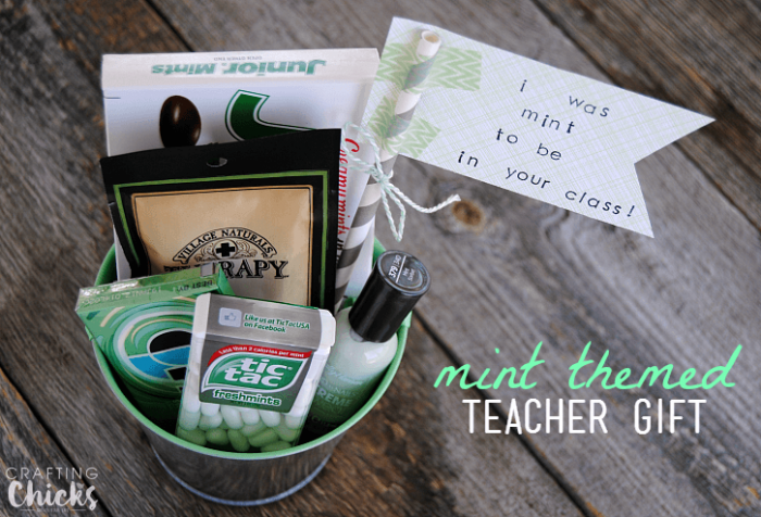 Our Mint Themed Teacher Gift is a thoughtful and inexpensive way to say thank you to a great teacher! Perfect for Teacher Appreciation Week!