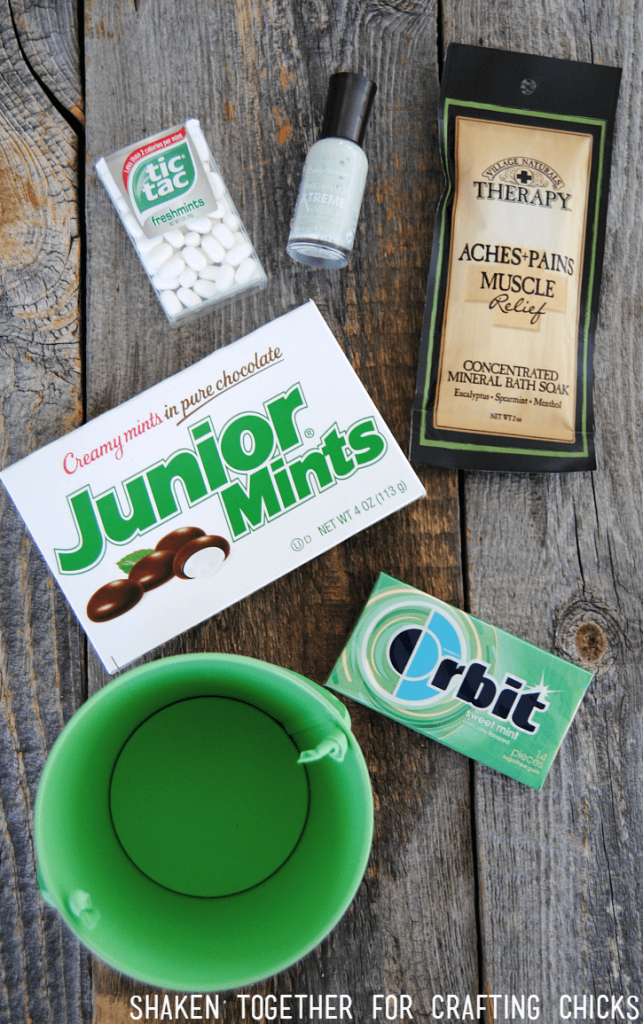 Hunting down all of the minty items to fill this bucket was the best part of this Mint Themed Teacher Gift!