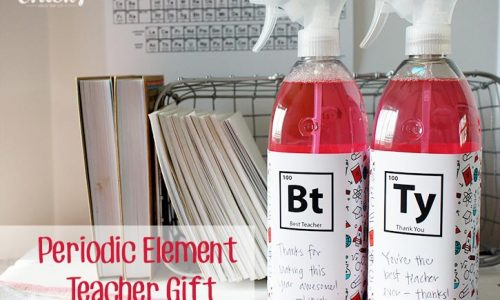 Science Teacher Gift Idea - Periodic Element Thank You