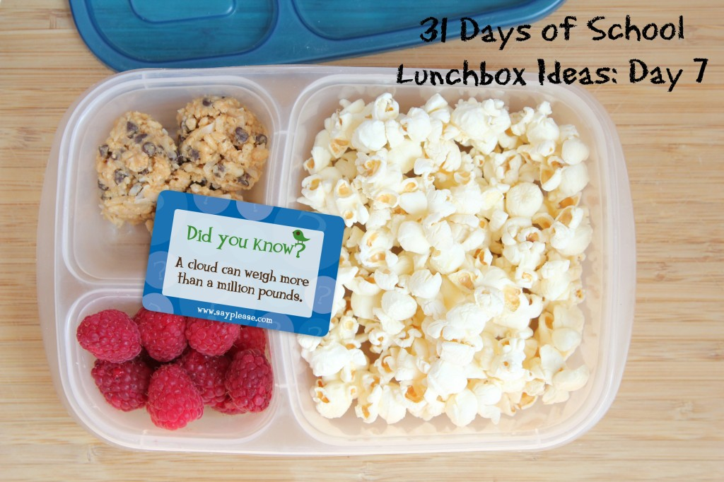 Non Sandwich School Lunches - So many great school lunch ideas in this post! Hot dogs, quesadillas, mini corn dogs, mac and cheese, taco salad... yum!