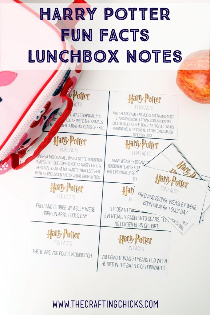 http://thecraftingchicks.com/wp-content/uploads/2016/08/Harry-Potter-Lunchbox-683x1024.jpg