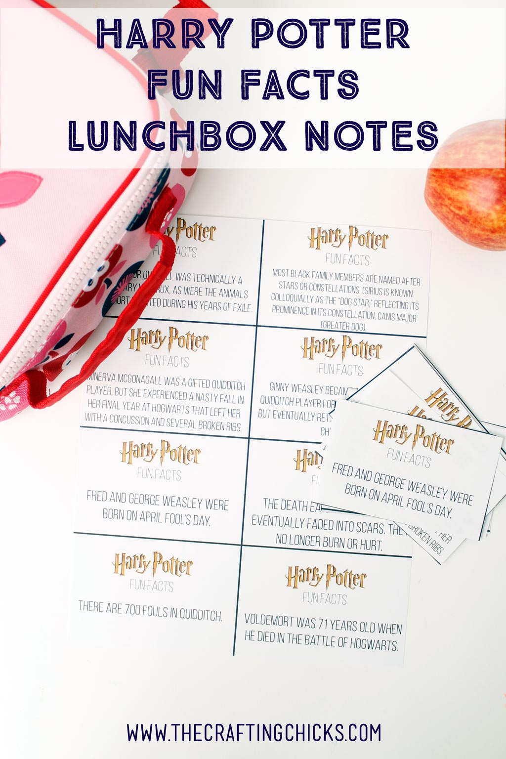 Harry Potter Fun Facts Lunchbox Printables. Perfect for any Harry Potter fan.