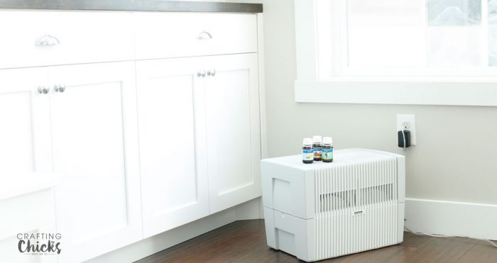 5 Things You Didn't Know Your Humidifier Could Do For You