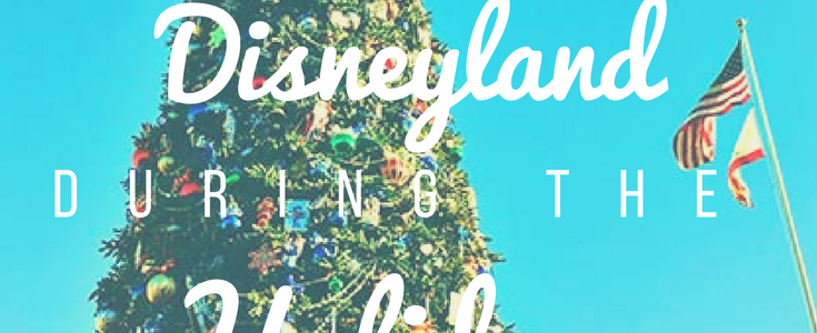 What to Expect at Disneyland During Christmas
