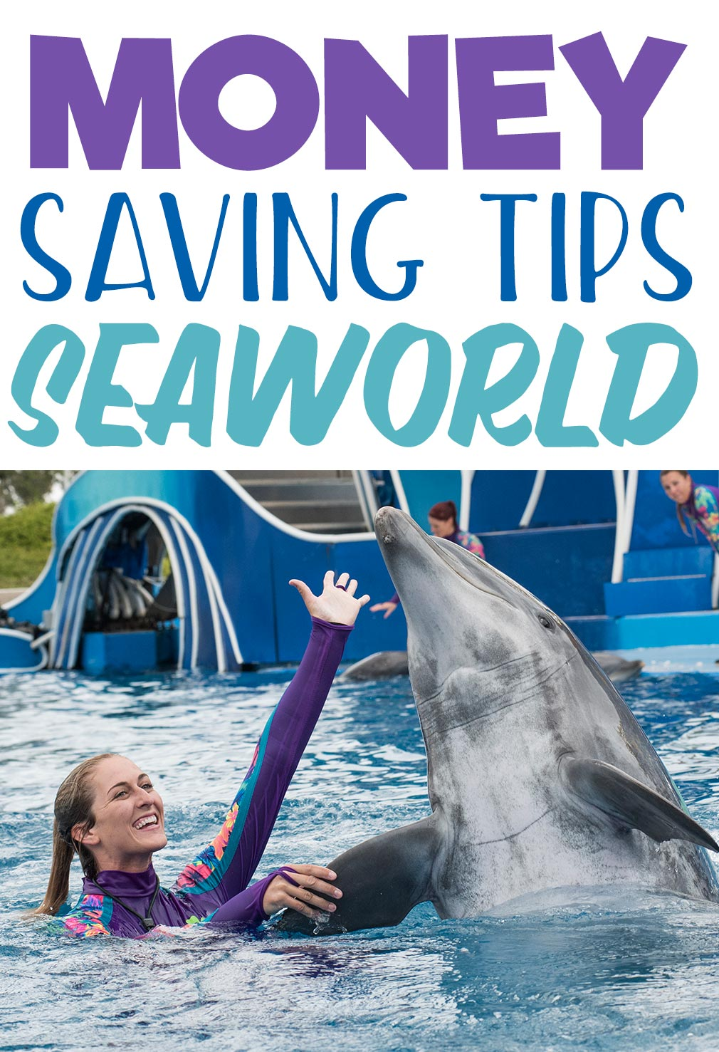 Money Saving Tips for SeaWorld