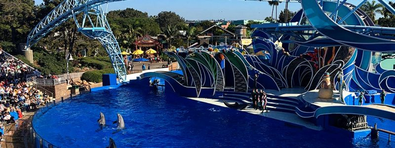 Money Saving Tips for SeaWorld San Diego