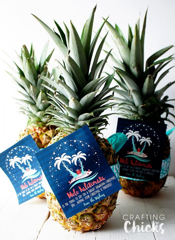 Pineapple Christmas Gift