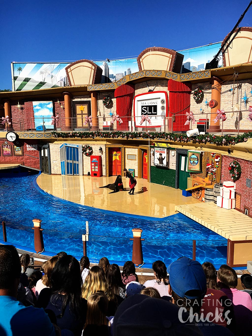 Top SeaWorld Attractions