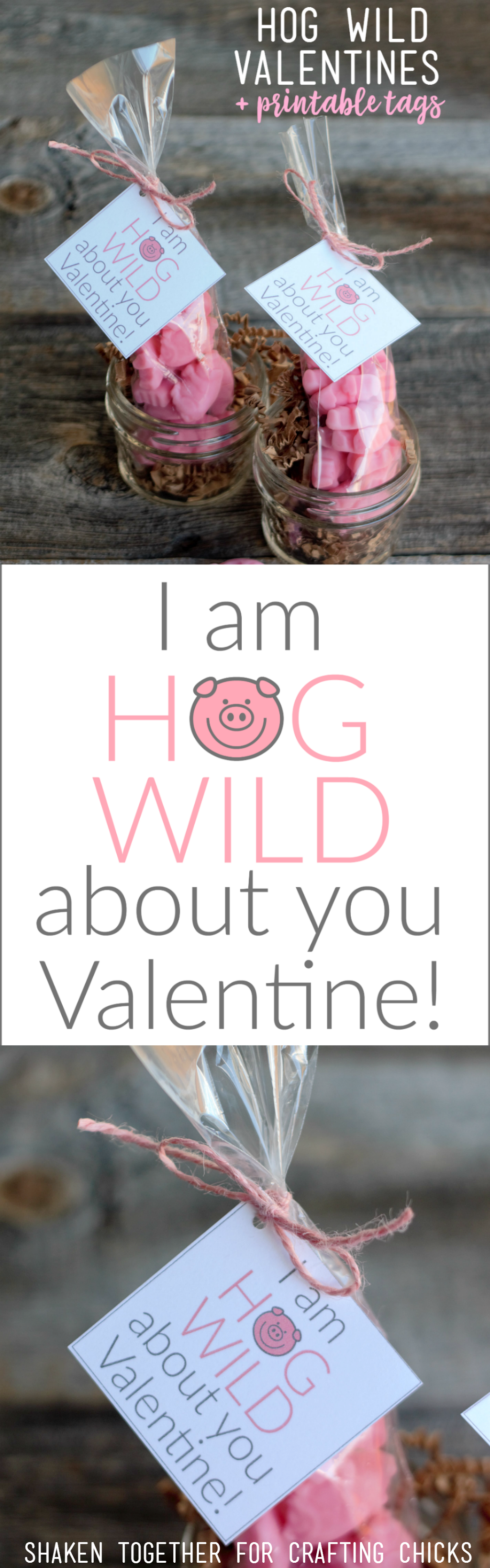 I Am Hog Wild About You Valentines - gummy pigs + printable tags = the cutest little Valentine gifts ever!