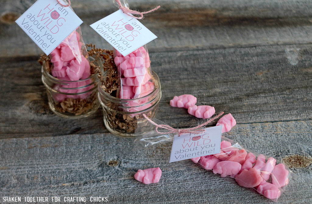 Gummy pigs + printable tags make the cutest I Am Hog Wild About You Valentines! These easy, affordable Valentines are fun for classmates, friends & family!