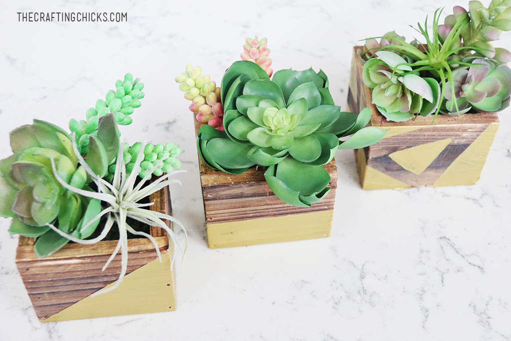 DIY Rustic Gold Succulent Planters - Add a touch of modern decor to your home!