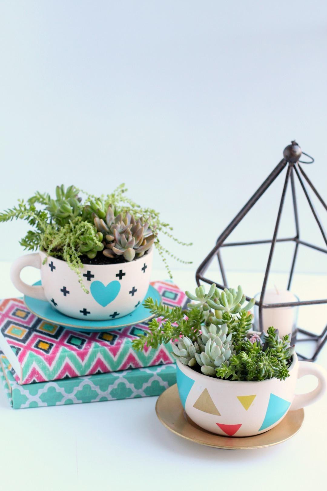 DIY Succulent Teat Cup Planter