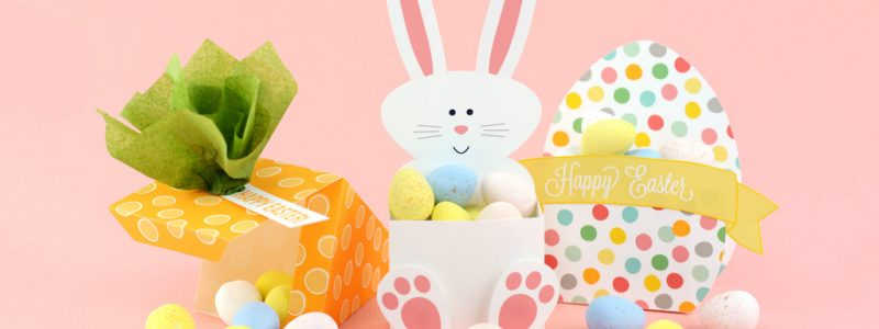 Easter carrot, bunny and egg treat boxes