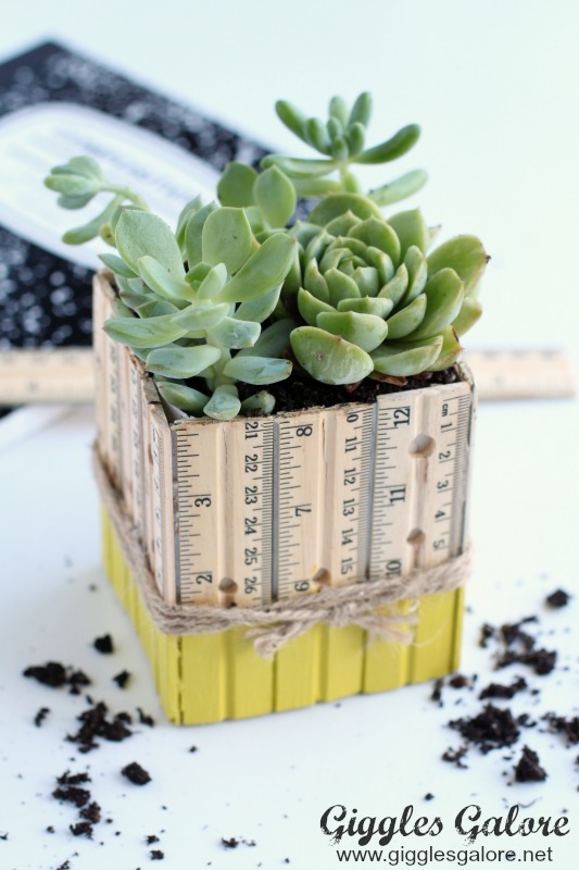 DIY Succulent Ruler Planter