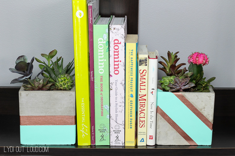 Cacus Succulent Planter Bookends