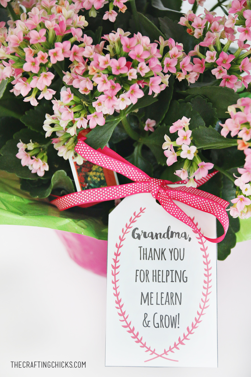 Mother's Day Plant Printable Gift Tags
