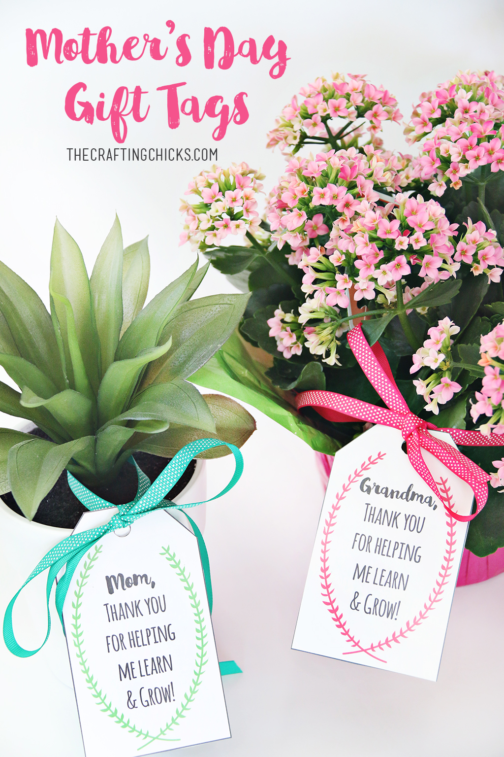 Mother's Day Plant Printable Gift Tags - Mother's and Grandmother's will love pretty flowers or plants with a gift tag that ties it all together.