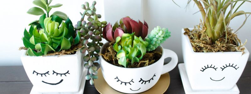 Top Picks for Succulent Planter Ideas