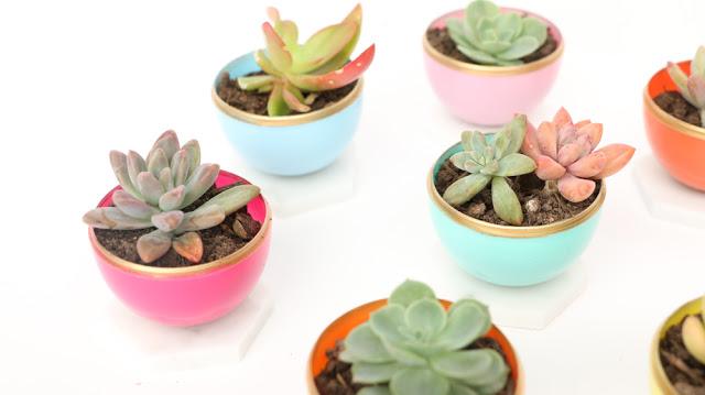 Egg Succulent Planters