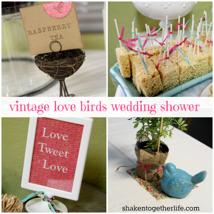Vintage Love Birds Wedding Shower - food, decor and more!