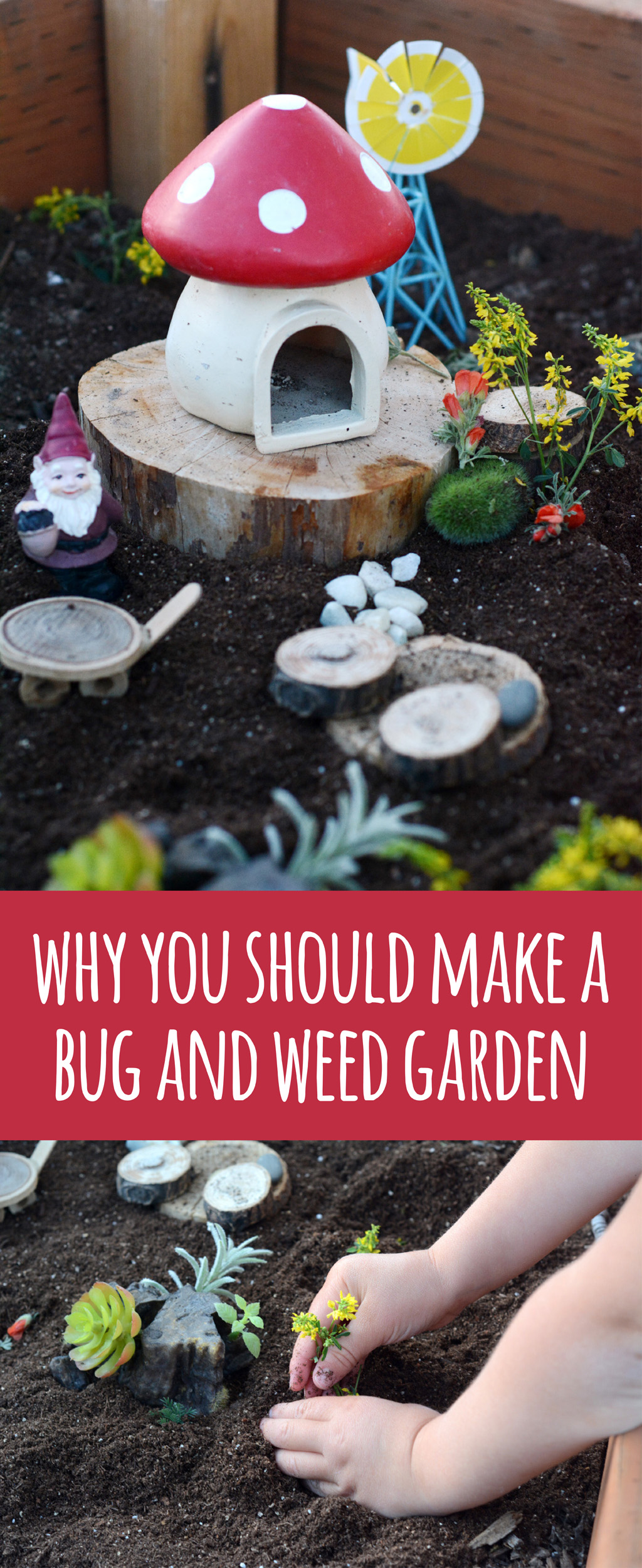 DIY Bug Garden - Give your kids a place to plant all those beautiful flower weeds they pick. The bugs will love living in a bug garden over a glass jar too.