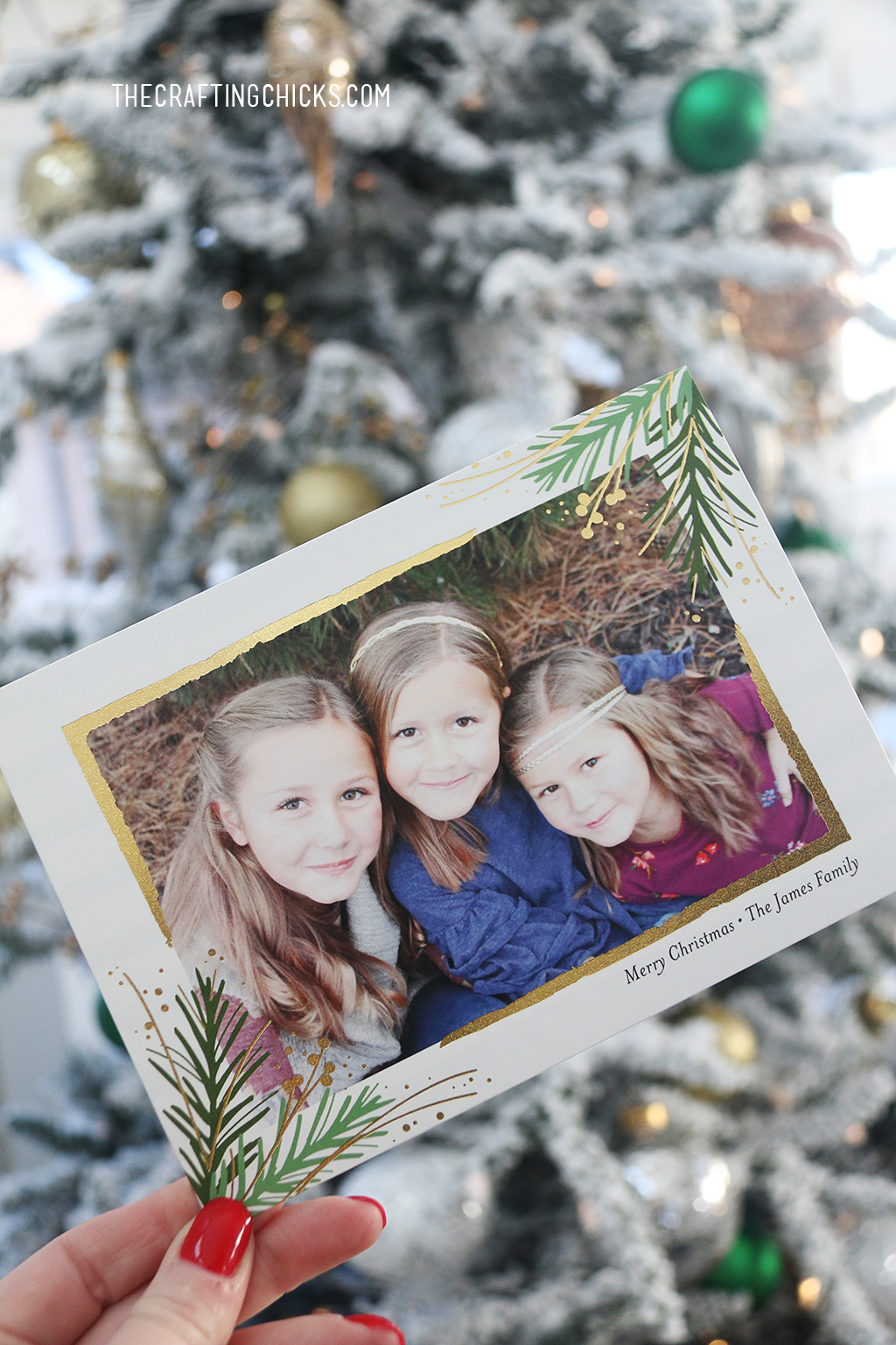 Holiday Photo Cards 2017! Each card was hand picked and made especially for each family. They are custom Christmas cards with foil printing. We think you'll love them as much as we do.