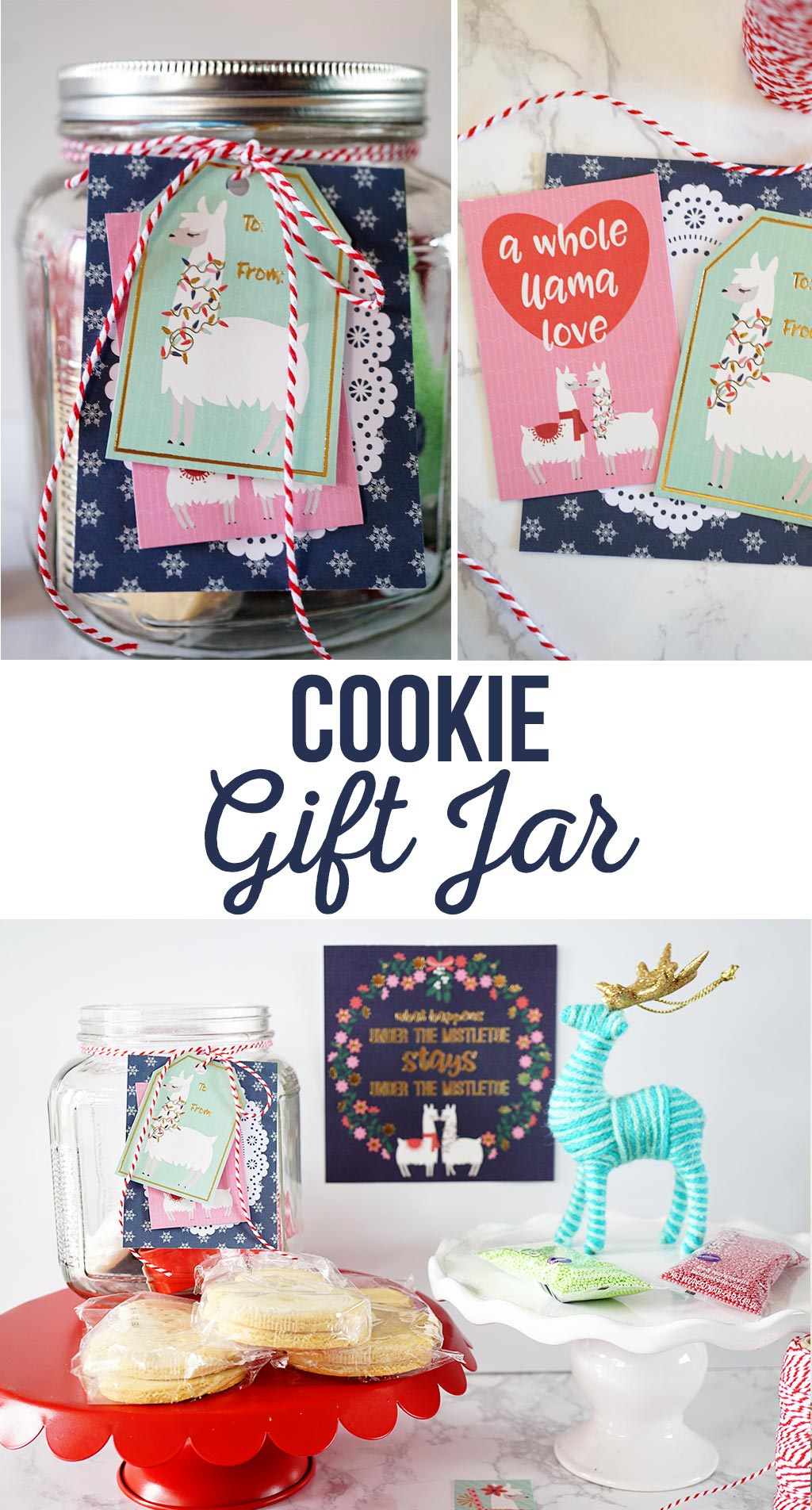 Cookie Gift Jar Idea