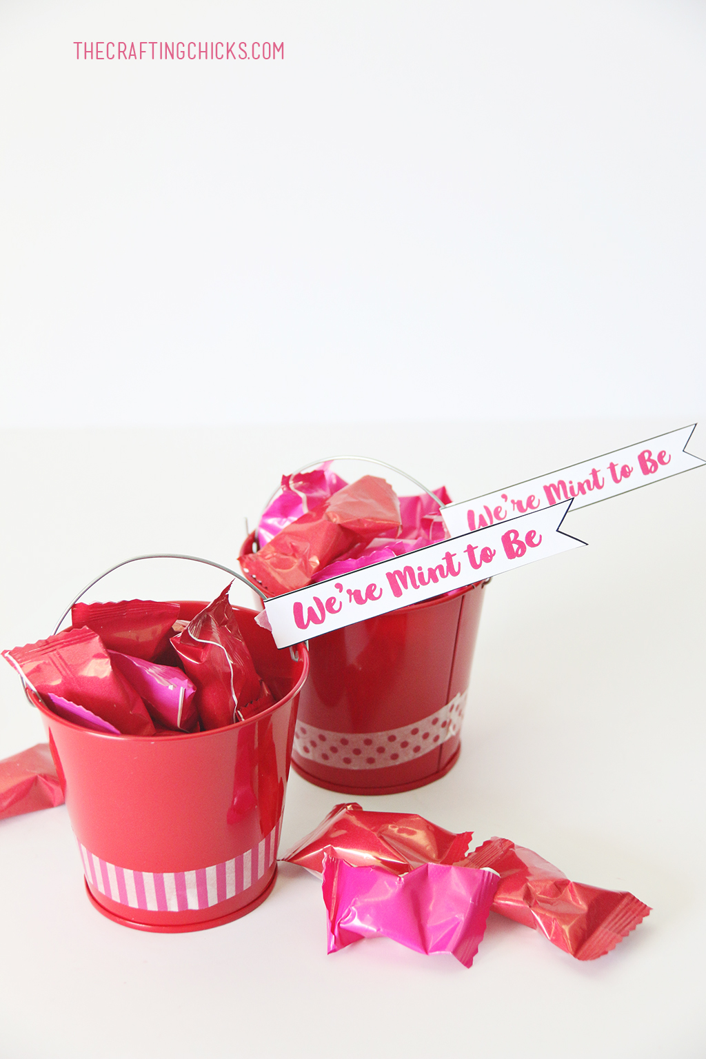 We're Mint to Be Printable Valentines are the perfect Valentine gift idea for friends and neighbors. These adorable buckets filled with mints or gum will be a hit with young and young at heart.