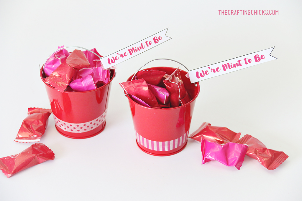 We're Mint to be Valentine Gift idea