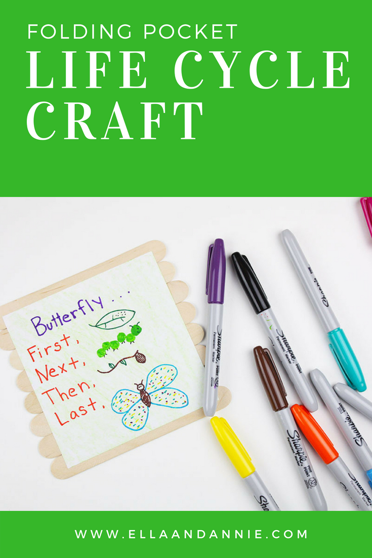 Butterfly Life Cycle Preschool Craft | Kids will love learning about the life cycle of a butterfly with this simple kids activity. This DIY folding pocket life cycle craft is made with just a few supplies. #kids #craft #preschool #butterfly #lifecycle #activity