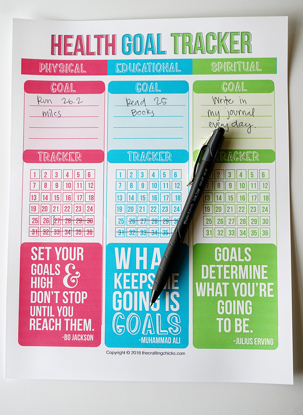 3 Health Areas Goal Tracker