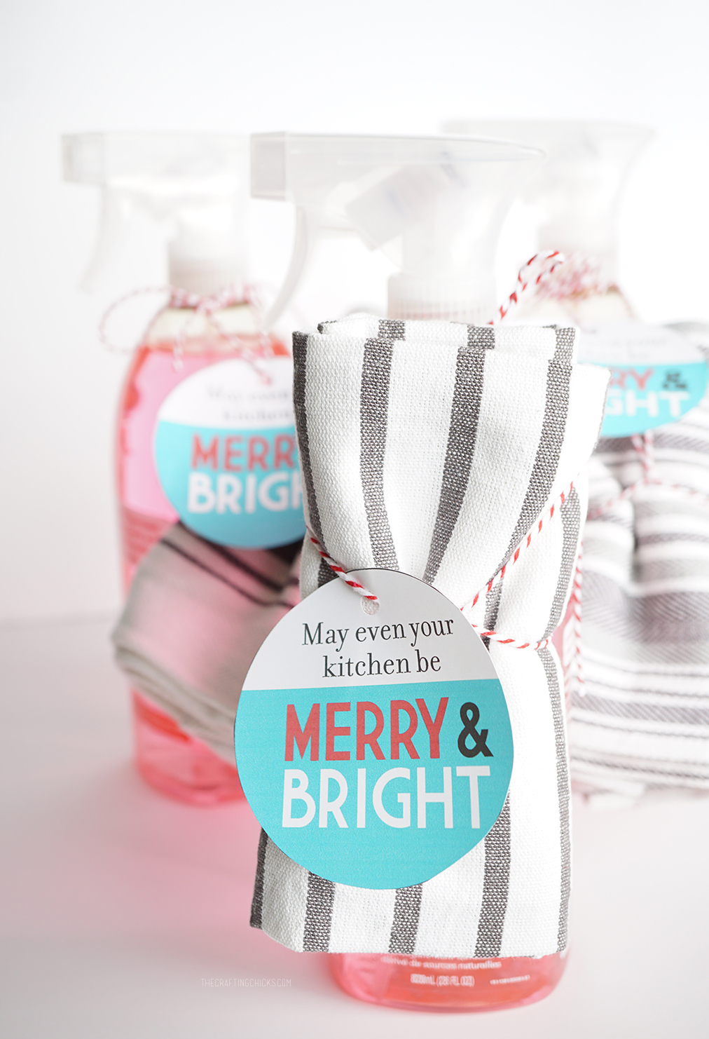 Merry and Bright Neighbor Gift Tag
