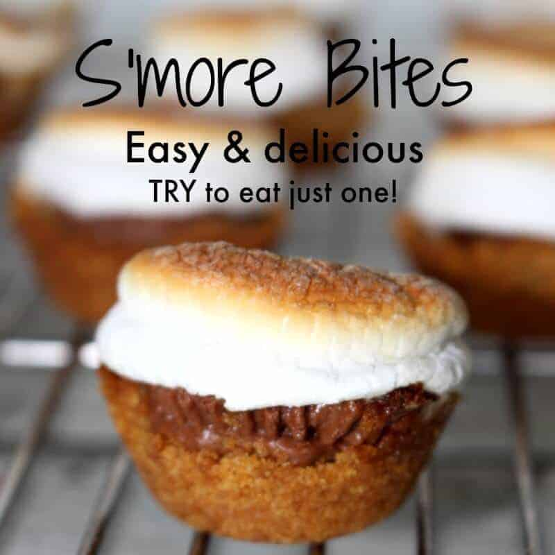 Rice Cooker Recipes smores bites